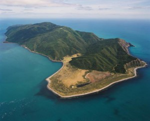 "Kapiti Island ... ""needed"" for Kiribati, if no climate solutions found, jokes President Tong. Image: The Rising Tide"