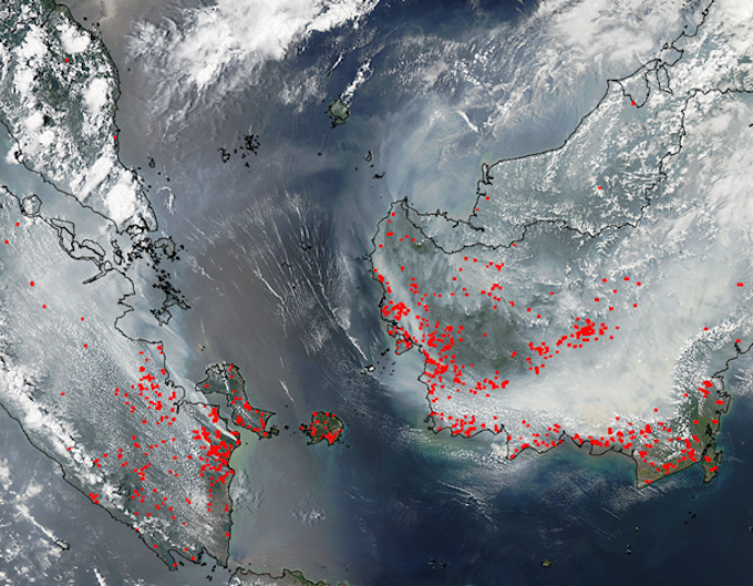 A satellite image of forest fires in Indonesia's Sumatra and Borneo. Image: beforeitsnews.com