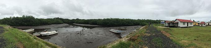 Daku village ... surounded by mangroves. Image: Ami Dhabuwala/PMC