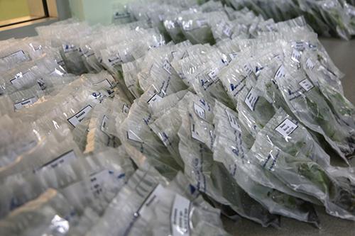 apr plastic pouches tja 260416 500wide