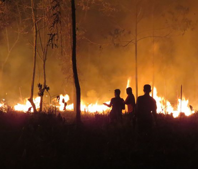 southeast Asian fire boom environmental consequence land