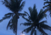 Moonset after TC Harold