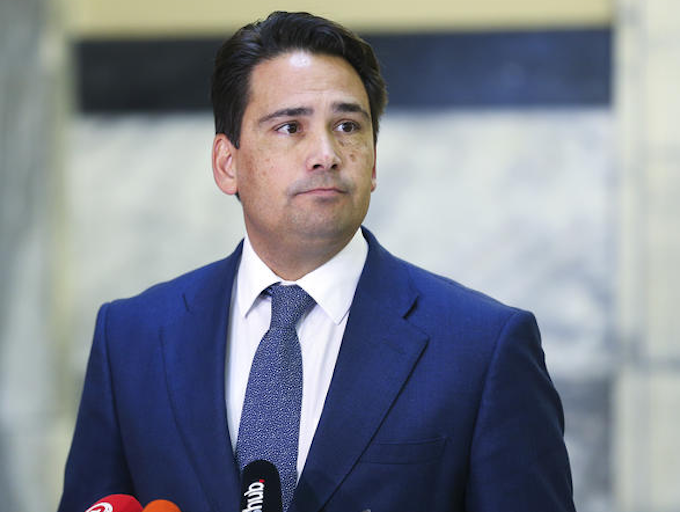 National Party leader Simon Bridges