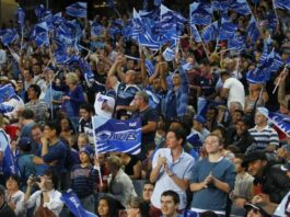 Blues rugby crowd