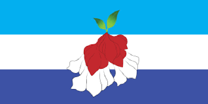 Fiji flag alternative