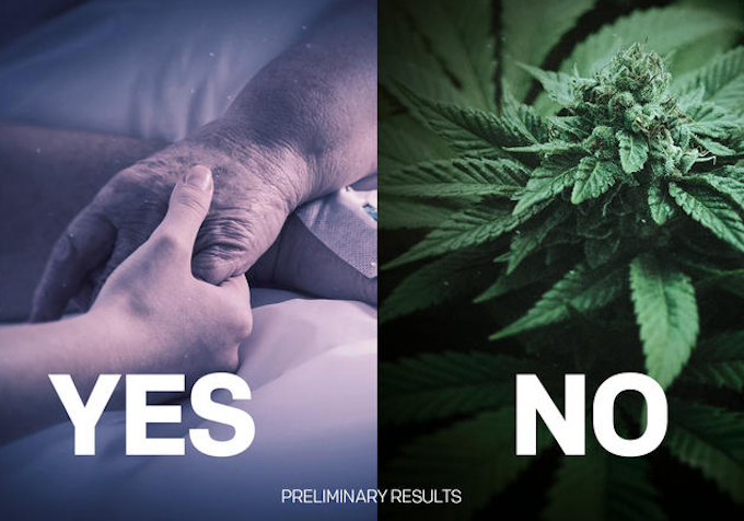 NZ referendum preliminary results –  yes to euthanasia reform, no to cannabis