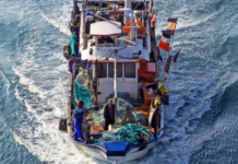 Fishing boat in Taiwan AllAtSea report 680wide