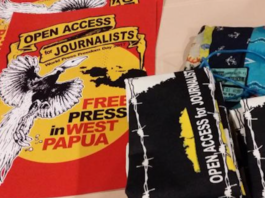Free media display in WP