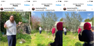 Screenshots from Palestinian Sheikh Jarrah resident Mona ElKurd's Instagram video