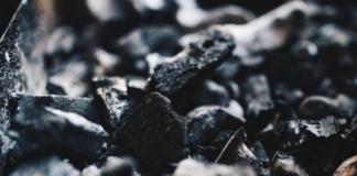 NZ coal imports