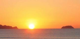 Mango dawn